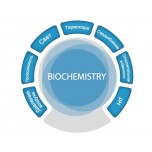 Цифровая лаборатория SenseDisс Biochemistry